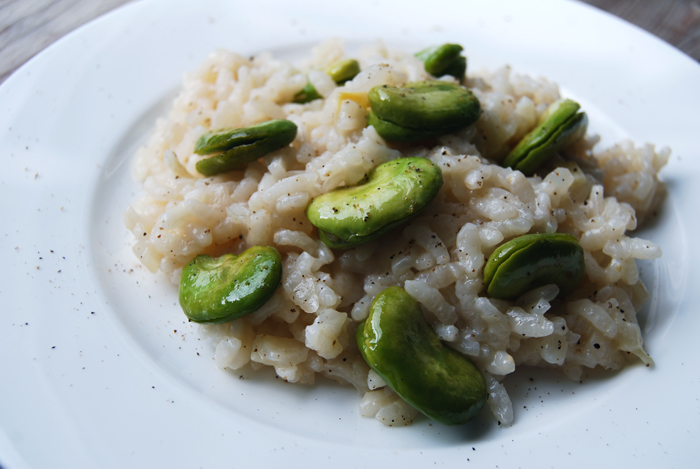 Parmesan Risotto with Fava Beans