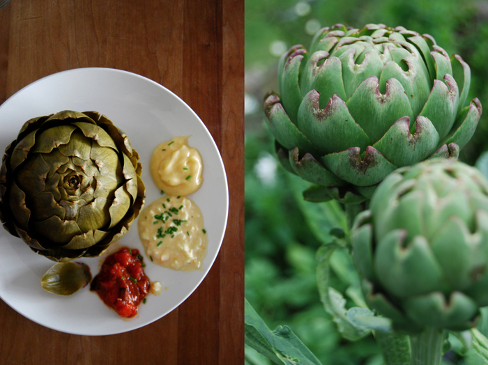 Artichokes a la Mama with 3 Sauces