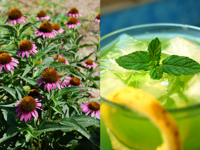 Basil and Mint Lemonade