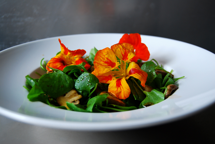 Miner's Lettuce, Mushrooms and Nasturtium