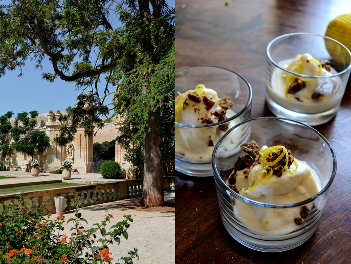 Marina's Lemon Marmelade Ice Cream with Caramelized Pistachios